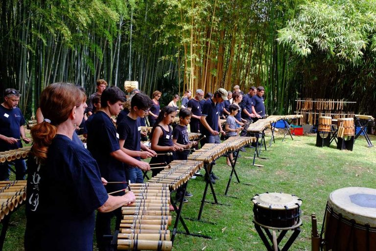 The shoots of the Bamboo Orchestra