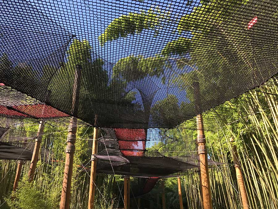 <p>Enjoy a truly unique experience on our net walkway that takes you up to 8 metres above the ground! Moving from platform to platform, you'll be in the midst of our bamboo where you can take your time to observe, admire and study it close-up, in complete safety and without treading on any roots!</p> <p>– Open to all, aged 6 and above, with an adult present</p> <p>– Special aerial adventure for younger children up to 6 years old</p>