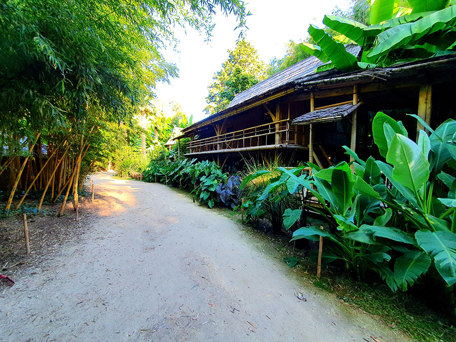 <p>This truly authentic Asian village was entirely built by a Laotian-born member of our staff ably assisted by his team, to showcase the architecture and décor of a traditional country dwelling in Laos. In the village grounds you'll also be able to see:</p> <p>–realistic landscapes,<br /> –plant species from Laos, such as:<br /> banana plants, Taros (Asian root vegetable), sugar cane, etc.</p>
