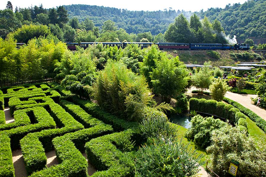 <p>This leafy labyrinth symbolises beginnings, the path to knowledge and personifies a journey. Your way out is lined with a Japanese variety of bamboo (Semiarundinaria makinoï). Its dense, short side-shoots make it perfect for trimming into hedges. Are you up to the challenge?</p>
